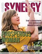 Guided Synergy Magazine
